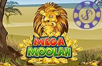 play Mega Moolah in NZ